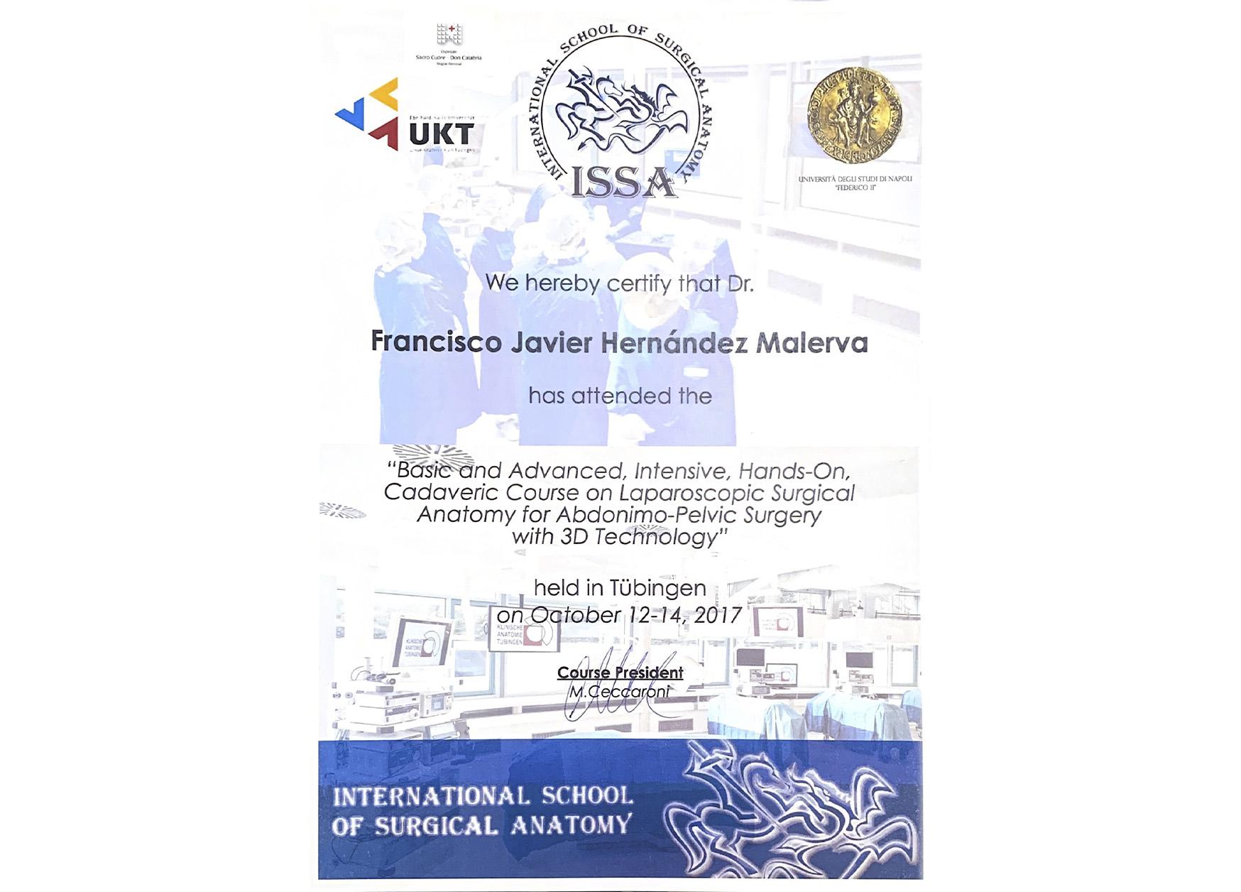 Curriculum - Ginecólogo en Guadalajara - Dr. Francisco J. Malerva